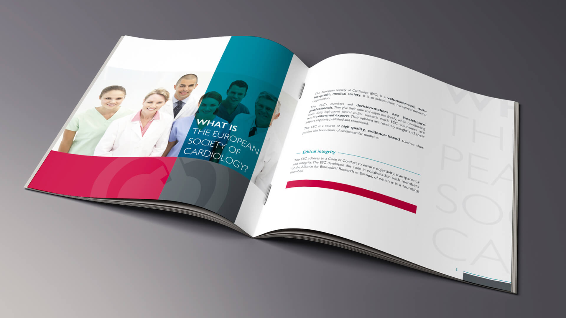 my-and-graphiste-freelance-marseille-agence-communication-sante-brochure-corporate-2