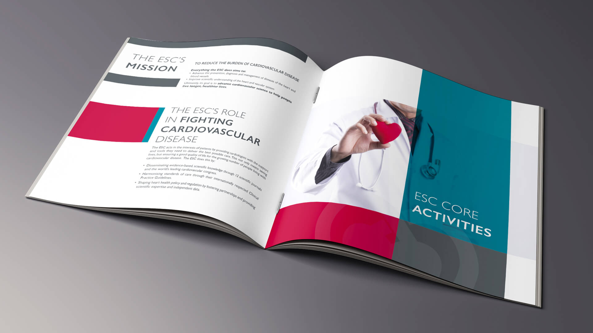 my-and-graphiste-freelance-marseille-agence-communication-sante-brochure-corporate-4